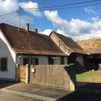 OBENHEIM : secteur Benfeld - Erstein, maison à rénover totalement sur un beau terrain constructible de 9,45 ares